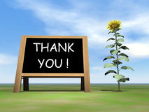 Sunflower blackboard saying thank you - 3D render Royalty Free Stock Photos