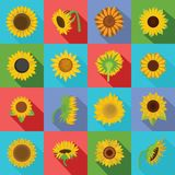 Sunflower blossom icons set, flat style. Sunflower blossom icons set. Flat illustration of 16 sunflower blossom icons for web stock illustration