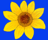 Sunflower on blue, painting Royalty Free Stock Photos