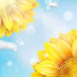 Sunflower with blue sky - autumn. EPS 10 Stock Image
