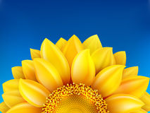 Sunflower and blue sky background. EPS 10 Stock Photos