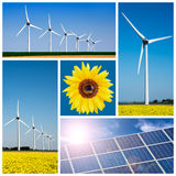 Sunflower, blue solar cells and wind turbine Stock Photo