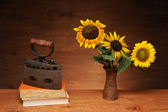 Sunflower and books with iron Stock Photo