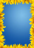 Sunflower border Royalty Free Stock Images