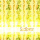 Sunflower border pattern background with light yellow text place Royalty Free Stock Images