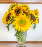 Sunflower Bouqet Royalty Free Stock Photos