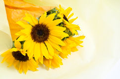 Sunflower bouquet Stock Image