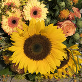 Sunflower bouquet in vivid yellow and orange colors. Sunflower arrangement in warm orange and yellow colors stock photo