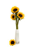 Sunflower bouquet in white vase Stock Photography
