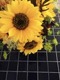 Sunflower bouquet Royalty Free Stock Images