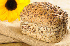 Sunflower Bread Royalty Free Stock Images