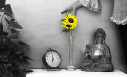 Sunflower and Buddha Royalty Free Stock Images