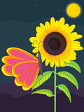 Sunflower butterfly stay moon Stock Photography