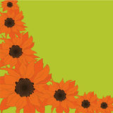 Sunflower card Royalty Free Stock Image