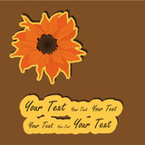 Sunflower card Royalty Free Stock Photo