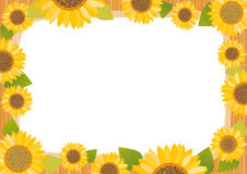 Sunflower card Royalty Free Stock Photo