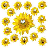 Sunflower cartoon Stock Image