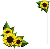 Sunflower cartoon background Stock Photos