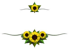 Sunflower cartoon background Royalty Free Stock Photos