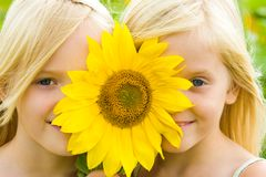 Sunflower children Royalty Free Stock Images