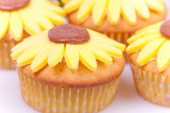 Sunflower cupcakes Stock Photography