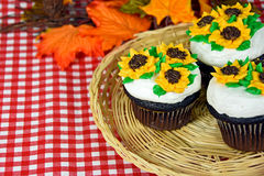 Sunflower cupcakes with autumn leaves Stock Photography