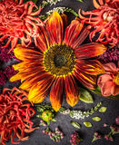 Sunflower and  dahlias flowers on black slate tray Royalty Free Stock Photo