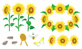 Sunflower Decoration set Stock Image