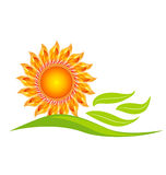 Sunflower logo design illustration Royalty Free Stock Image