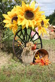 Sunflower display for thanksgiving. Recreation of a rural harvest scene with large sunflowers, wagon wheel and straw basket Royalty Free Stock Photos