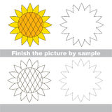 Sunflower. Drawing worksheet. Royalty Free Stock Image