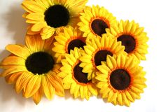Sunflower Exhibit. An arrangement of artificial sunflowers Royalty Free Stock Photos