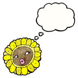 Sunflower face with thought bubble Stock Image