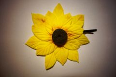 Sunflower. Is always facing the sun with a smile Royalty Free Stock Photos