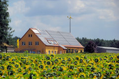Sunflower field and solar plant Royalty Free Stock Photos