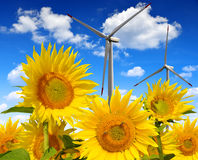 Sunflower field with wind turbines Stock Photography