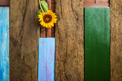 Sunflower and fishnet wooden background Stock Images