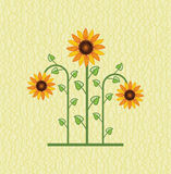 Vector sunflower floral background Royalty Free Stock Photos