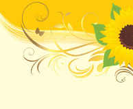 Sunflower with floral ornament Royalty Free Stock Photography