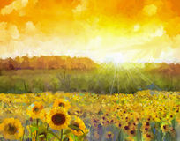 Sunflower flower blossom.Oil painting of a rural sunset landscape with a golden sunflower field. Warm light of the sunset and