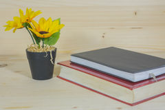 Sunflower in a Flowerpot and book Stock Images