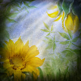 Sunflower flowers and green leaves Royalty Free Stock Images