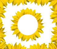 Sunflower frame. For text or image Stock Images