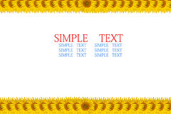 Sunflower frame. With space for text Royalty Free Stock Photography