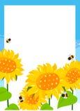 Sunflower frame Royalty Free Stock Photos
