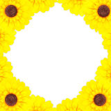 Sunflower frame Stock Photos