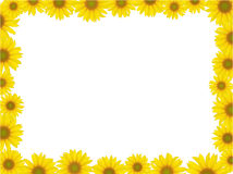 Sunflower frame vector illustration