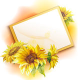 Sunflower frame background Royalty Free Stock Image