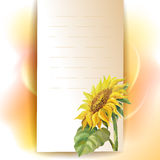 Sunflower frame background Stock Image
