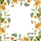 Sunflower frame Stock Images